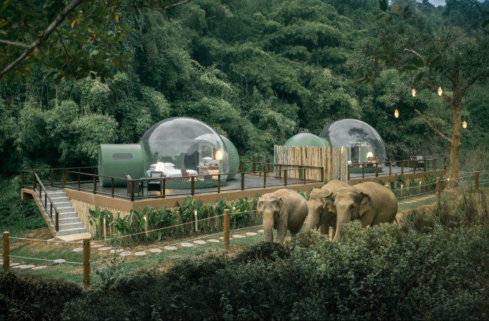 Anantara Golden bubble hotel with elephants