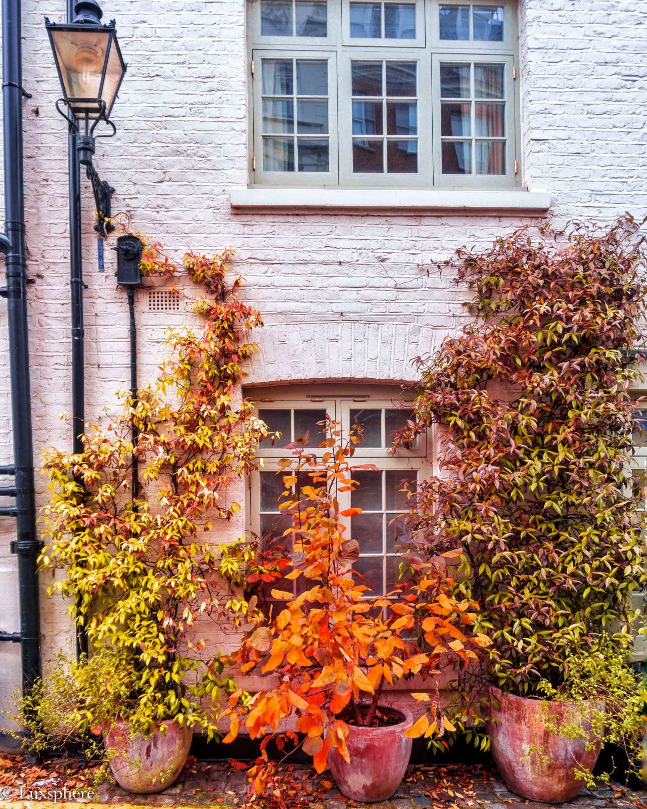 Best streets in London in Autumn Atherston mews