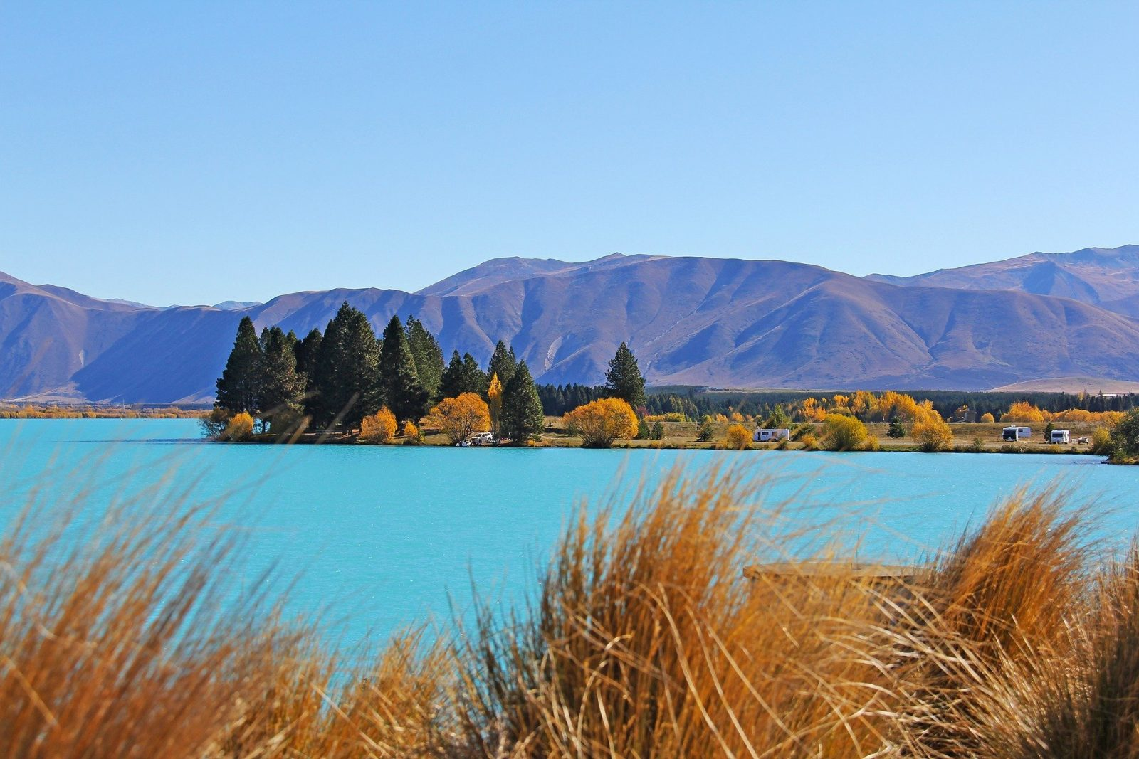 where to see the arrival of fall New Zealand