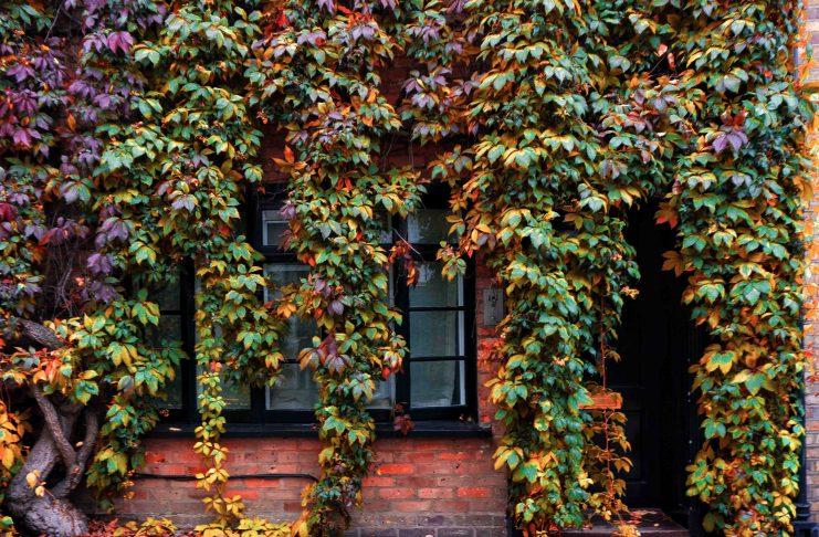 Prettiest streets in London Kynance Mews
