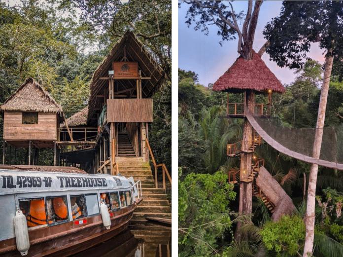 Treehouse Lodge Resort