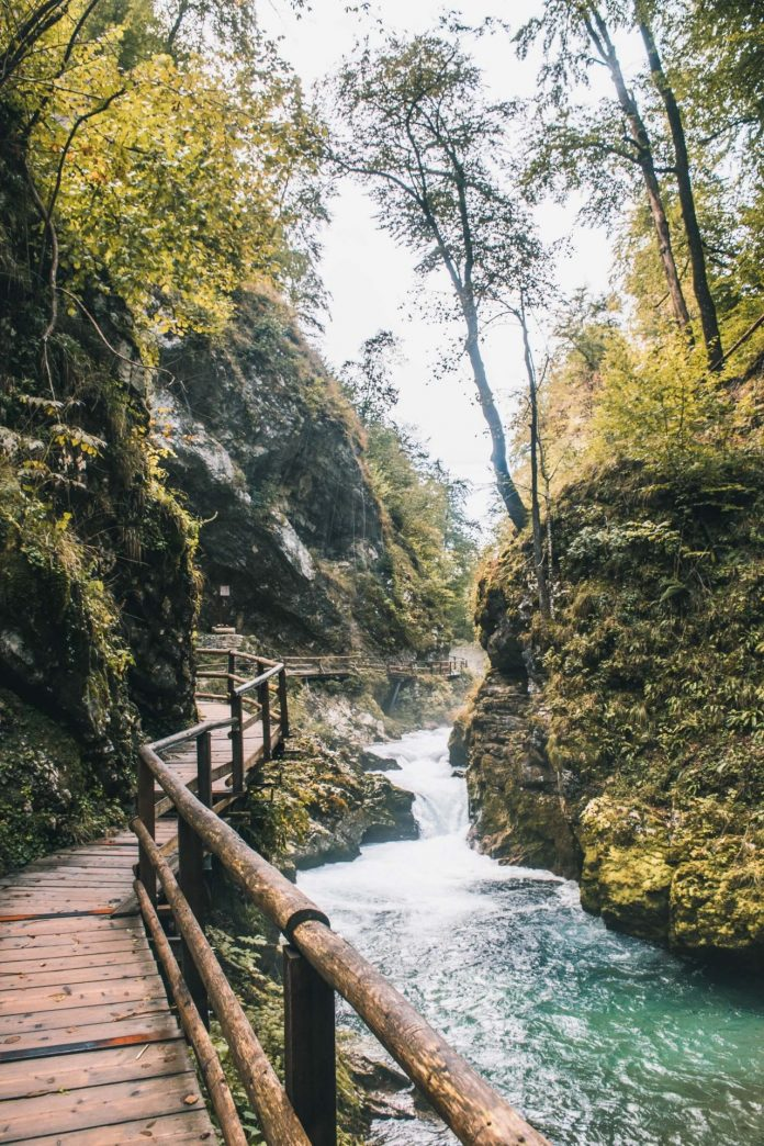 Vintgar Gorge things to do in lake bled