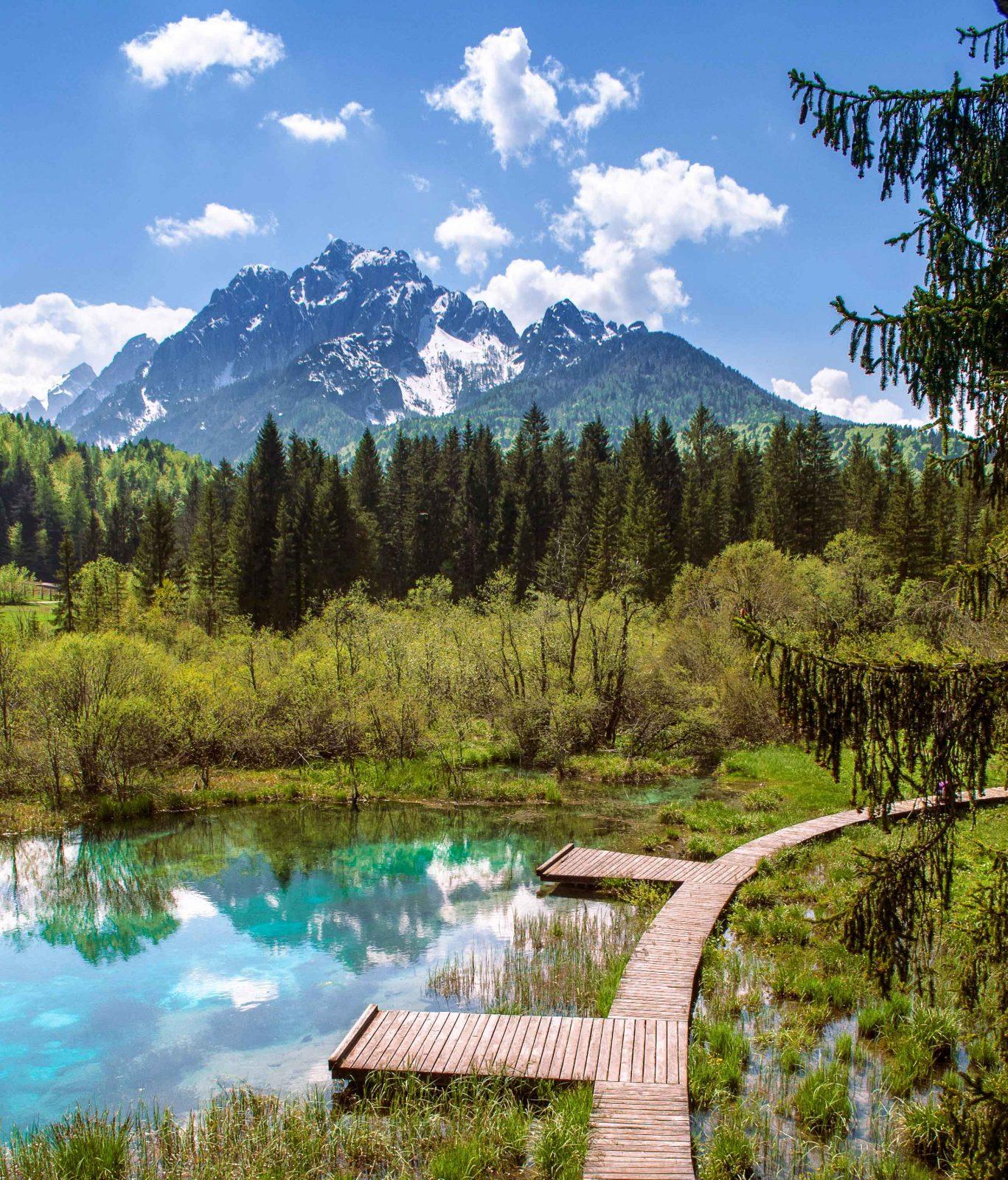 Zelenci beautiful destinations in slovenia