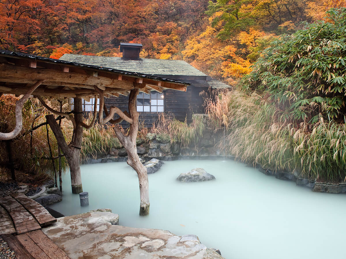 where to see the arrival of fall Japan