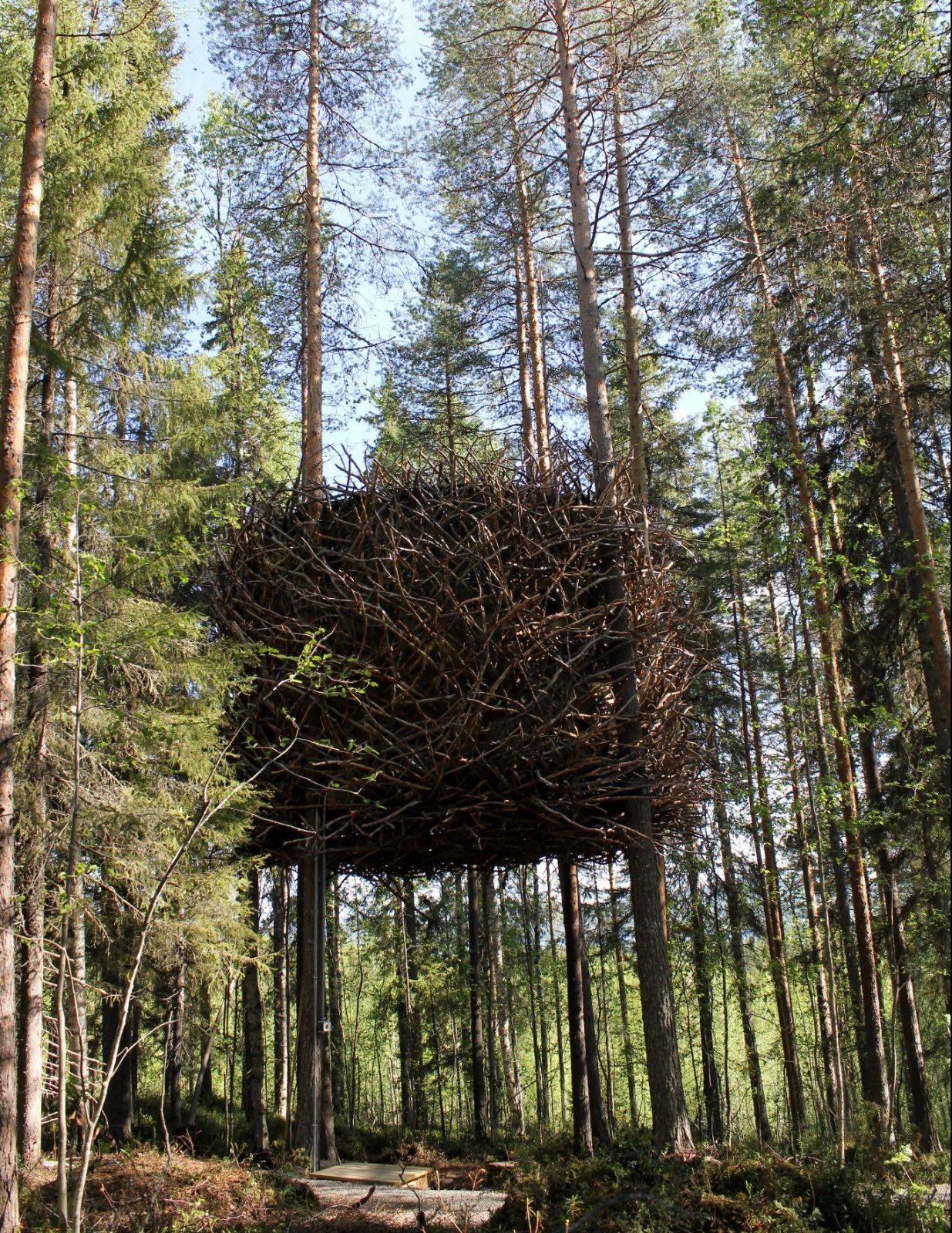 birds nest treehouse