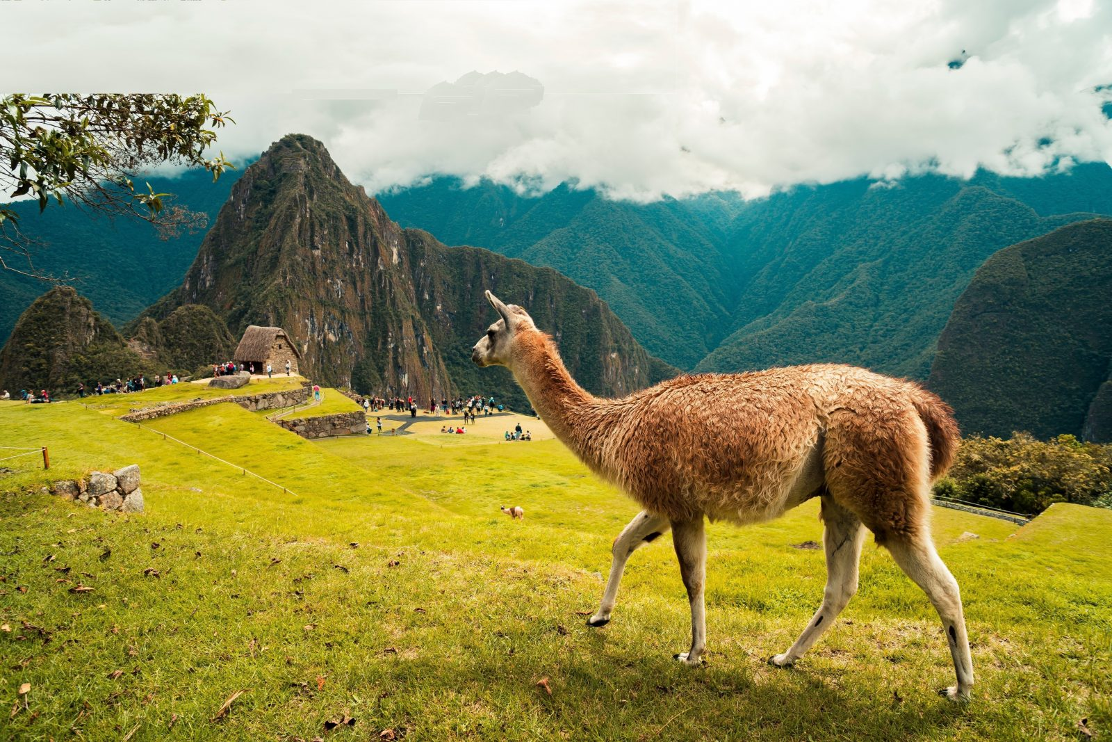 holiday destinations in september peru