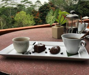 hotels on a coffee farm with a view