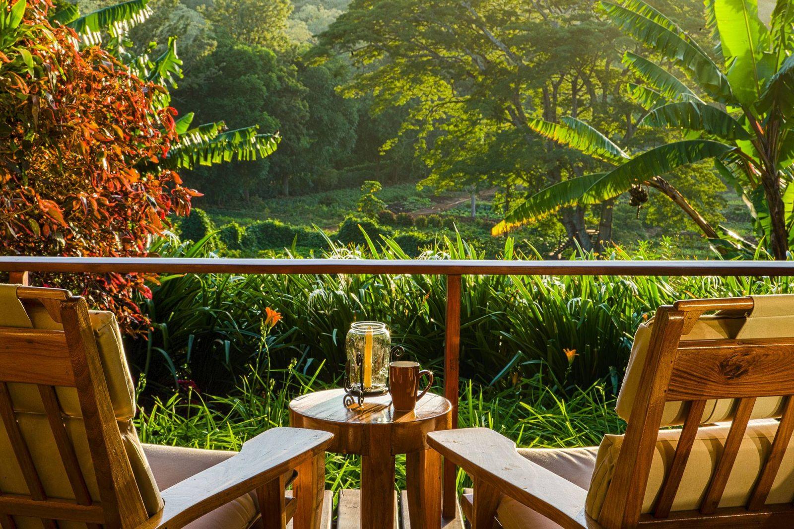 hotels on a coffee plantation gibbs farm coffee