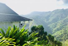 hotels on a coffee plantation in jamaica