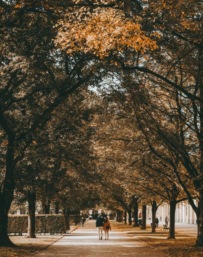 places so visit in london during autumn