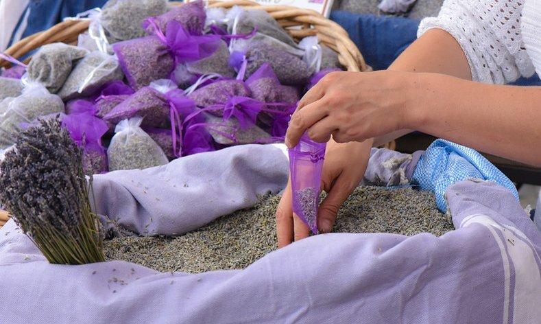 split market lavender guide croatia