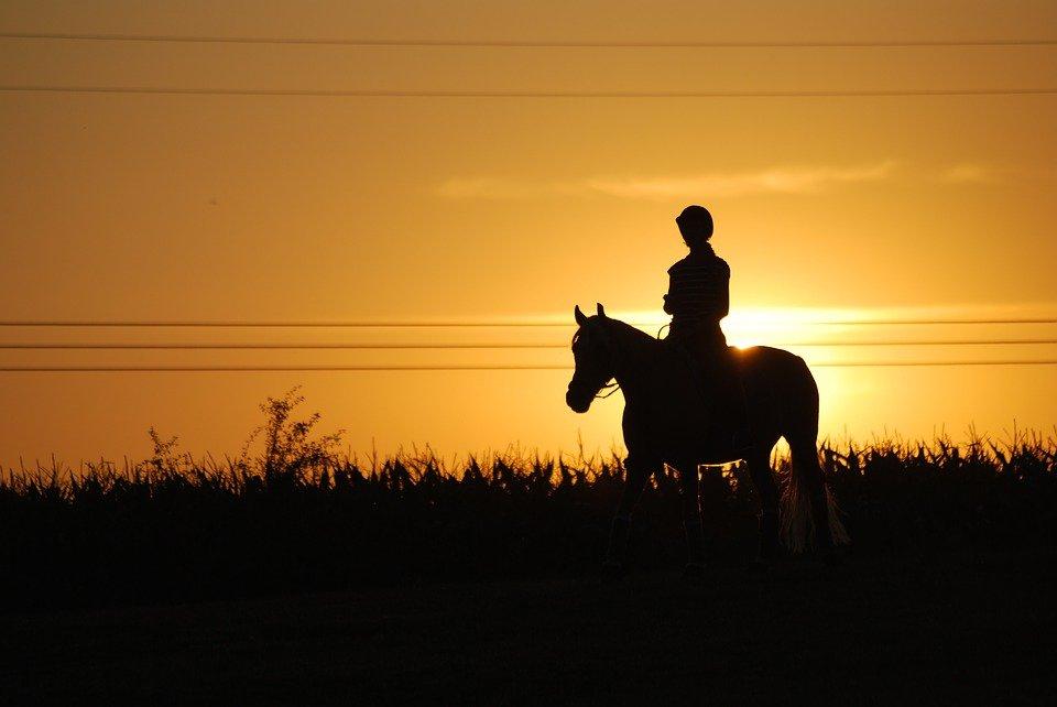 sunset horse riding malta