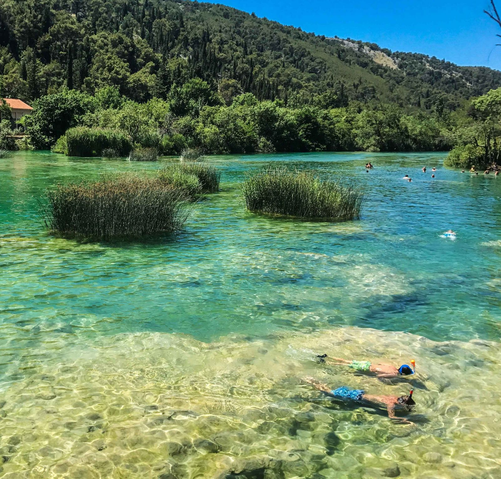 swimming and snorking in the krka waterfall