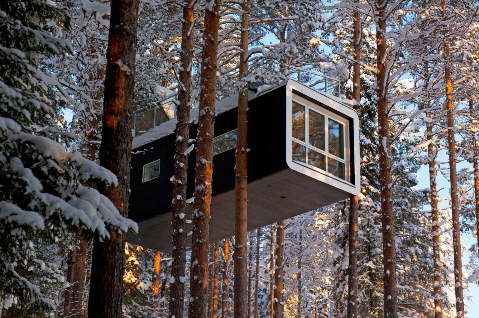 tree house cabin to watch northern lights